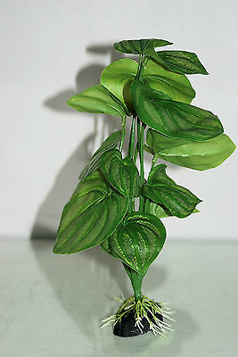 Aquarium Green With Roots x 2 Pieces Approx 30 cms Tall 00K 3