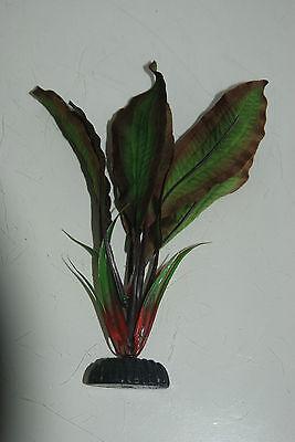Aquarium Silk Plant Amazon Broad Leaf Plant Green & Red 20 cms High 6