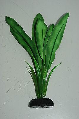 Aquarium Silk Plant Echinodorus Broad Leaf Plant Dark Green 30 cms High 2