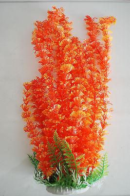Aquarium Plants Approx 35cms High Small Leaf Orange Suitable for all Aquariums 4