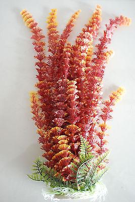 Aquarium Plants Approx 35cms High Small Leaf Bronze Suitable for all Aquariums 4
