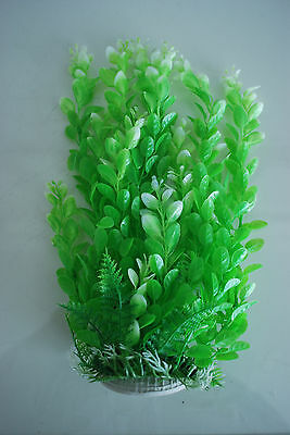 Aquarium Plants Approx 33cms High Green Suitable for all Aquariums 4