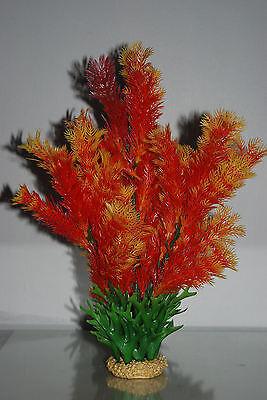 Aquarium Plant Limnophila Flora Orange With Weighted Stone Base 38 cms 2