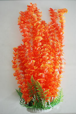 Aquarium Plants Approx 35cms High Small Leaf Orange Suitable for all Aquariums 3