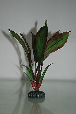 Aquarium Silk Plant Amazon Broad Leaf Plant Green & Red 20 cms High 3