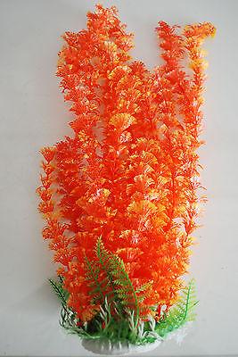Aquarium Plants Approx 35cms High Small Leaf Orange Suitable for all Aquariums 6