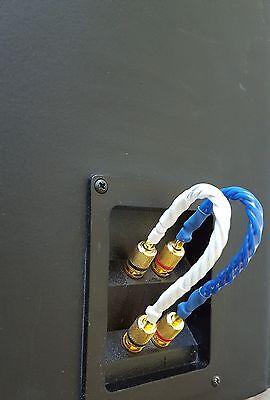 Ble Design Bi Wire Spade Or Banana Plugs Audiophile Bridge