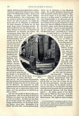H.v.Gehlen Ägypten Aus dem Lande der Pharaonen El Kantara Kairo Giseh Karnak1904 3