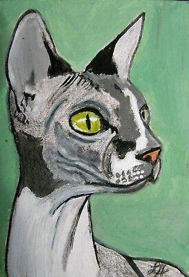 "C77    Original Acrylic Painting By Ljh       ""Pinkie""   Sphynx  Cat 3"