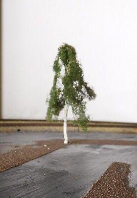 3 Birken, 120 mm hoch in Premium Qualität, jeder Baum ist ein Unikat 11