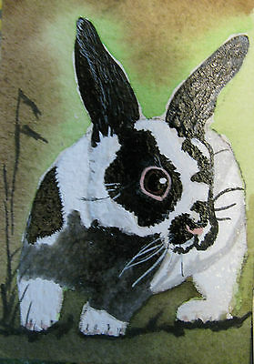 "A869    Original Acrylic Aceo Painting By Ljh    ""Pete Rabbit""  One-Of A-Kind 5"