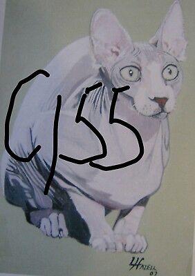 "C179  Original Acrylic Painting By Ljh  ""Teddy ""  British Shorthair  Cat  Kitten 7"