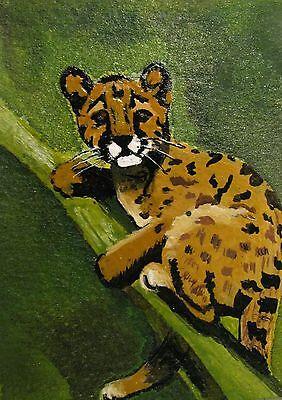 "C80   Original Acrylic Painting By Ljh   ""Bear""    Cat   Kitten 10"