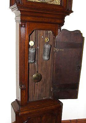Antique Brass Dial Burr / Pollard Oak Longcase Grandfather Clock MOSS FRODSHAM 8