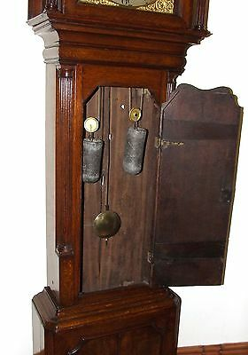 ~ Antique Brass Dial Burr / Pollard Oak Longcase Grandfather Clock MOSS FRODSHAM 8