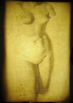 Venus Afrodita Desnudo Mujer Escultura Dibujo Al Carboncillo L Ap Antiguo 63CM 2