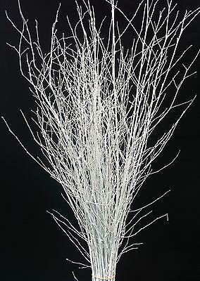 White with iridescent glitter-90cm/'s x 25 stems