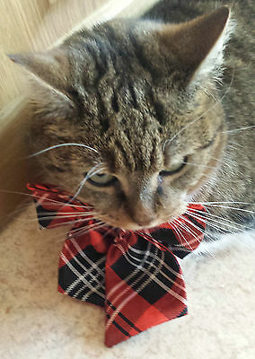 UK Adjustable Pet Cat Dog Teddy Doll Neck Tie Grooming Bowtie Mix Fashion Colour 7