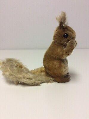 Vintage Steiff Squirrel Plush No Tag No ID Hard To Find! 3