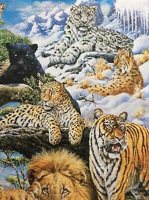 Tiger Lynx Jaguar Lion Big Cat Wrapping Paper: Cheetah