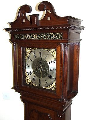 Antique Brass Dial Burr / Pollard Oak Longcase Grandfather Clock MOSS FRODSHAM 3