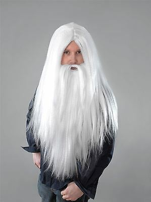 Long White Wizard Wig & Beard Halloween Gandalf Merlin Mens Fancy Dress Costume