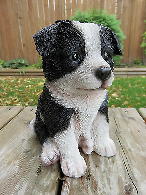 """Made In UK Little Paws """"Bess"""" Border Collie Dog Figurine 6.75/"""" Long New In Box"""