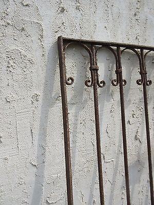 Antique Victorian Iron Gate Window Garden Fence Architectural Salvage Door #682 5