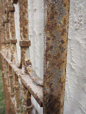 Antique Victorian Iron Gate Window Garden Fence Architectural Salvage Door #333 6