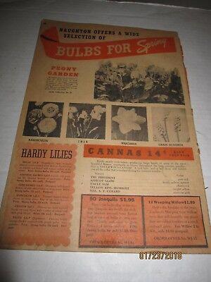 1946 Naughton Farms Spring planting catalog - Waxahachie TX b59