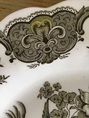 Ridgway Windsor Green Multicolor Piatto Fondo 1960 Porcellana Ceramica