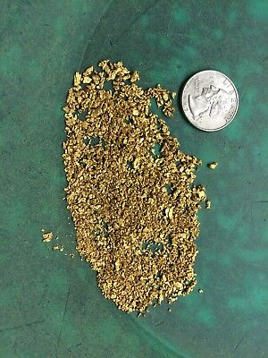 Gold Paydirt PREMIUM - 6 LBS - Unsearched Gold Panning Bag - Nuggets Pickers 8