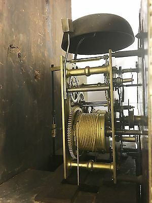 ~ Antique Brass 8 Day Oak & Mahogany Longcase Grandfather Clock WALKER NANTWICH 11