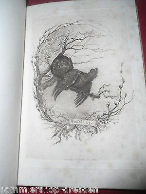 Dombrowki Aus dem Tagebuche eines Wildtöters für Freunde des Waidwerkes EA 1878 2