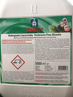 Sanibox in tanica da 5 litri detersivo igienizzante detergente pulizia pavimenti 5