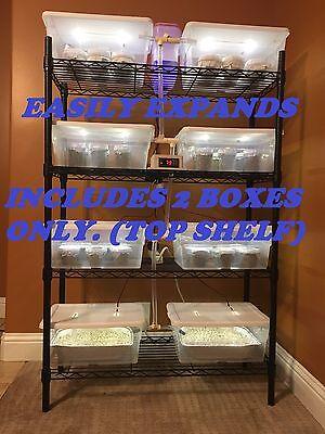ELITE MUSHROOM GROWING Kit with 12 PF Tek Style Jars - Expandable/Automated