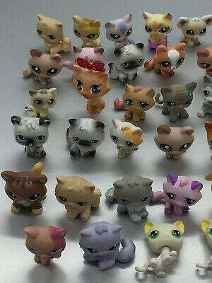 Lps Littelest Pet Shop Chat Cat 40 Ex. Au Choix Choose Petshop Little Pet Shop 4