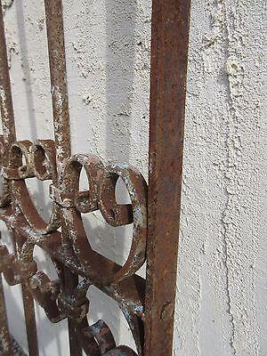 Antique Victorian Iron Gate Window Garden Fence Architectural Salvage Door #343 6