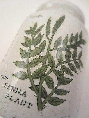 Boots Chemist Senna Keramik Porzellan Gefäß Flasche Dose & Deckel Apotheke Antik