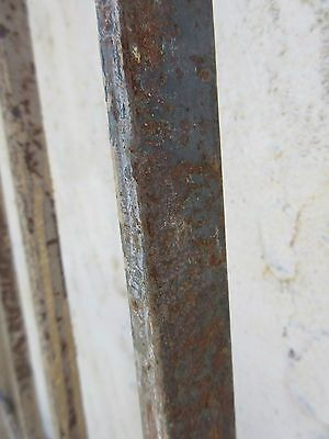 Antique Victorian Iron Gate Window Garden Fence Architectural Salvage Door #369 6