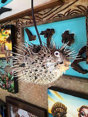 "NEW 6""-7"" Puffer Fish Lamp w/color changing LED Light Tiki bar Smokin Tikis fx2 11"