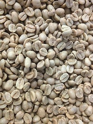 Raw Green Coffee Beans - Indian Elk Hill Estate - 3kgs 2