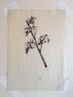 Edna Boies Hopkins ink painting study for woodblock print Arts & Crafts Mission 2