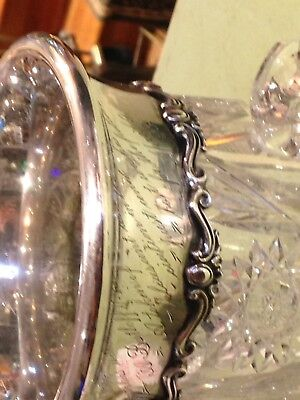 Brilliant cut glass three handle loving cup sterling silver collar 1898 REDUCED!