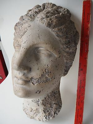 EARLY 1900s ROMAN BUST OR GREEK GODDESS NY MUSEUM REPRODUCTION NATURAL HISTORY