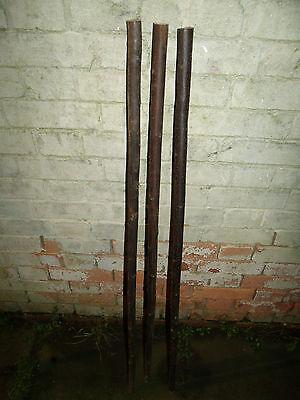 3 Chestnut Shanks Stickmaking Walking Stick Shafts Blanks Bark Seasoned Blank 8