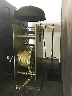 ~ Antique Brass 8 Day Oak & Mahogany Longcase Grandfather Clock WALKER NANTWICH 12