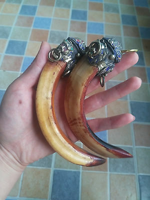 Wild Lion package Wild Boars Tooth Hog talismanic Pendant To ward off bad luck 7