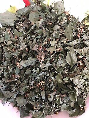 "Mexican Dream Herb  (Calea Zacatechichi) 10 Grams ""Organic"" 2"