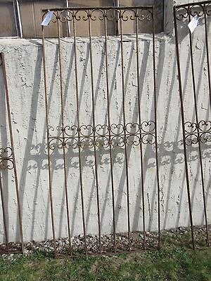 Antique Victorian Iron Gate Window Garden Fence Architectural Salvage Door #352 5